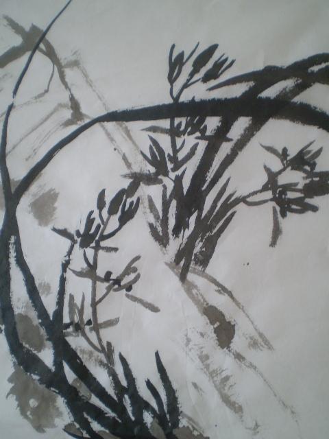 四川山上草木丰茂,密集处人无法能够进入,果树满山枇杷橘柚,桃李