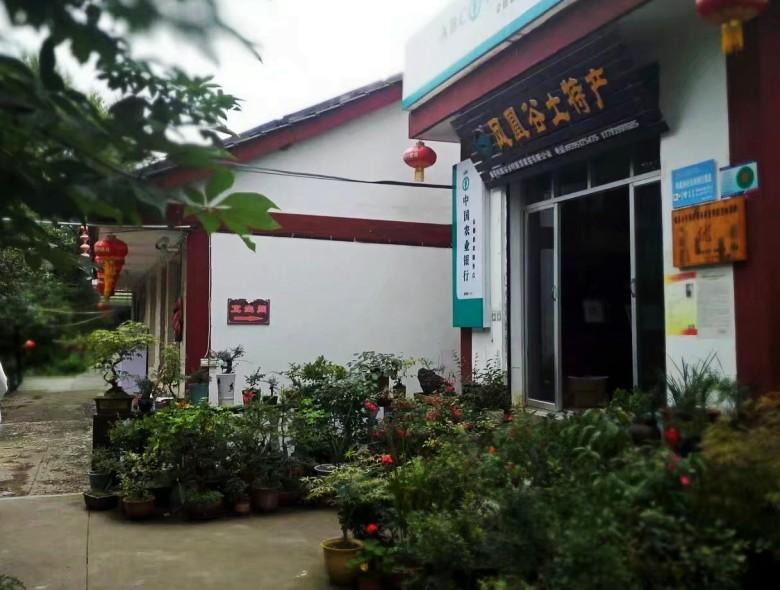 康县行之三――城关镇凤凰谷村
