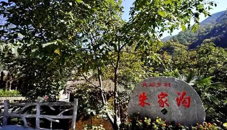 康县行之五——白杨乡朱家沟村